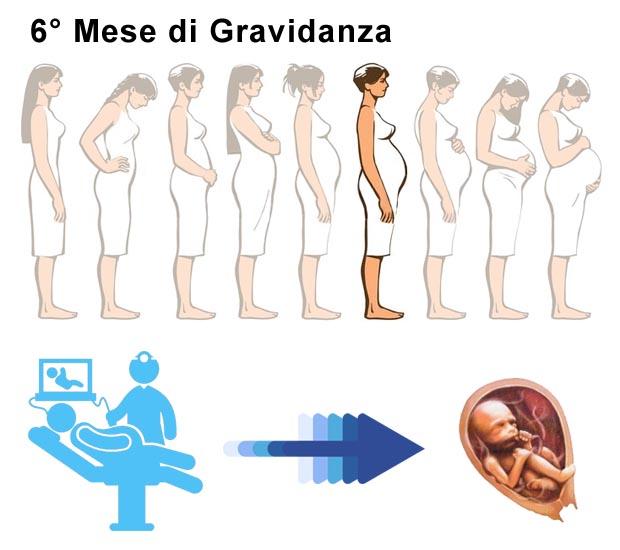 Sesto Mese Di Gravidanza Settimane Di Gestazione Da 22 A 26