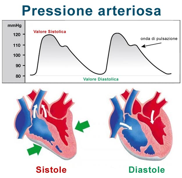 La prostata aumentata influenza su una potenzialità